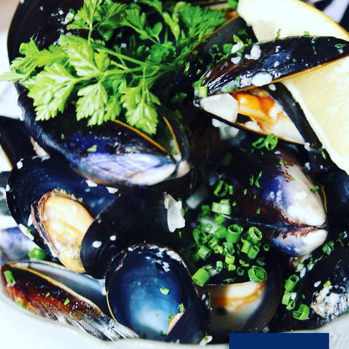 We love coming up with exciting specials, using new flavours &amp; unique combinations, but let&#39;s not forget the simple, classic dishes.... I for one absolutely love moules mariniere!  Local, delicious mussels  We can do them dairy free too. #poole #DairyFree #localseafood <br>http://pic.twitter.com/Z4LFEZ2CGD