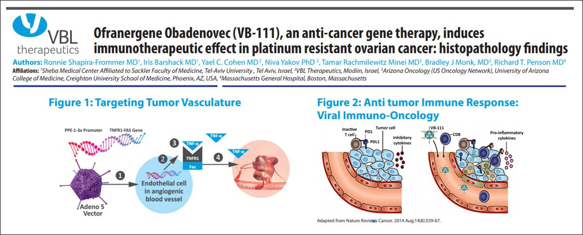 Ddnews Online On Twitter Viral Anti Cancer Vb 111 Induces Immune Infiltration Of Ovariancancer Leading To Necrosis Sustained Clinical Response Genetherapy Lead Disrupts Tumor Vasculature Turns Cold Tumors Hot Vbl Collabs Tell
