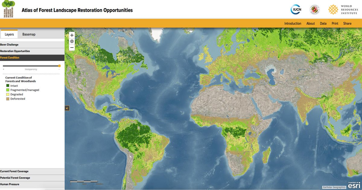 A fantastic interactive map for deforestation from @Esri, lots of different layers to analyse, pressures and potential futures included too! Thanks!   http://www. wri.org/applications/m aps/flr-atlas/# &nbsp; … <br>http://pic.twitter.com/BFsG6JEAnf
