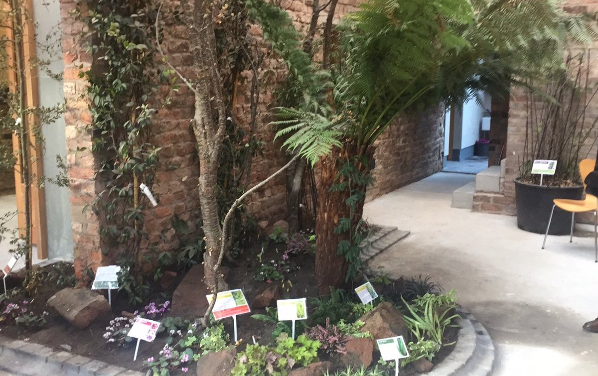 Join us Wed 20th MarchFrom 2 derelict terraced houses, after 2 yrs in construction, 4 yrs in planning &amp; design &amp; 20yrs of community imagination and struggle, we&#39;ve created an amazing space - combining an indoor garden with an artists&#39; residency and creative community space. <br>http://pic.twitter.com/xufyfwX0pC