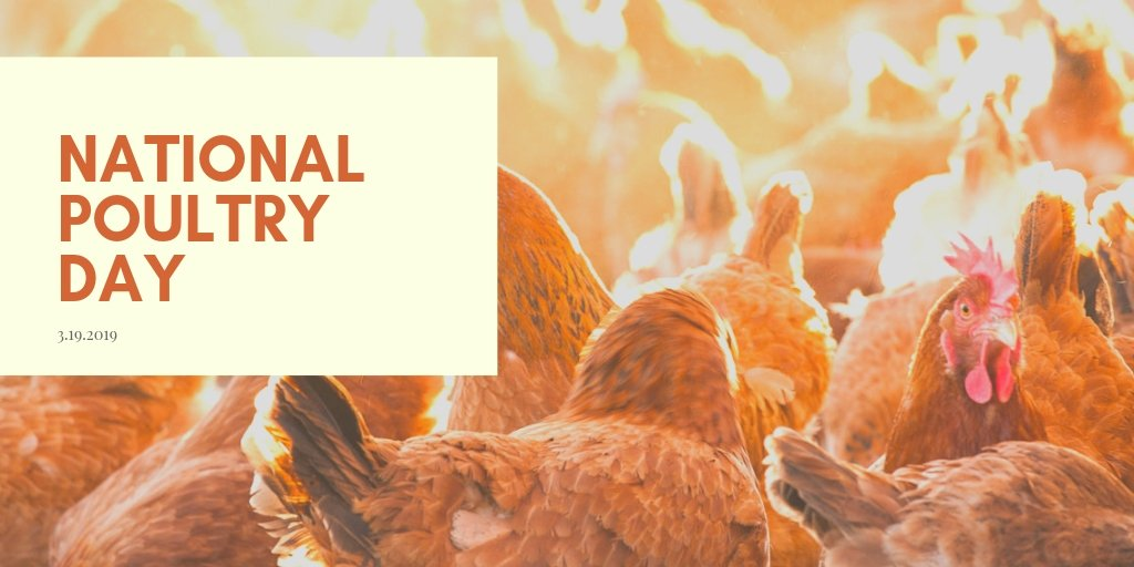 Happy #NationalPoultryDay 🐔Arkansas leads the U.S. in poultry production, and poultry is the largest agricultural product in the state. I'm privileged to know many farmers and businessmen who make this industry succeed. To them and others involved in the process, thank you!