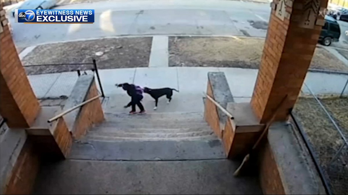 VIDEO: Teen with broom rescues young children from dog attack in Chicago neighborhood https://abc7.la/2FnMdPN