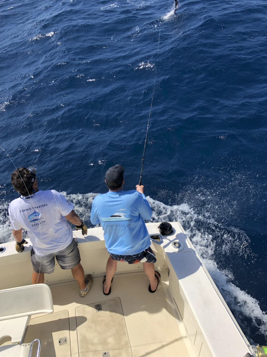 Grenada - Capt. Frothy de Silva on the Hard Play just released a Sailfish.