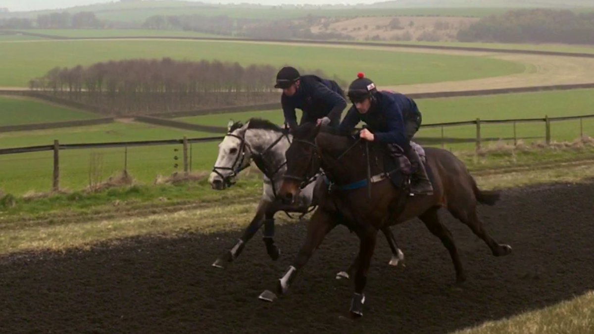 Away day to @LambournGallops for Bells N Banjos @jpbargary94 &amp; Macksville @jacobpritchardwebb #excitingtimes #nationalhuntracing<br>http://pic.twitter.com/RiWoXV1p50
