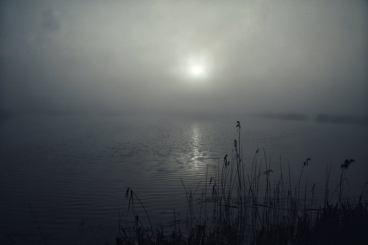 Slightly concerned that some of my images this year are of grey nothingness. Sun breaking through the mist on the Somerset levels. #Somerset <br>http://pic.twitter.com/RSDDoI2baF