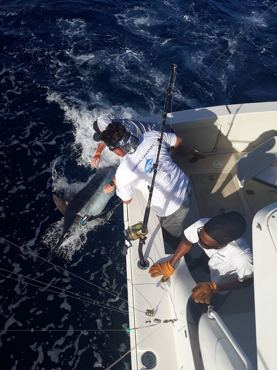 Grenada - Capt. Frothy de Silva went 1-1 on Blue Marlin and 1-1 on Sailfish.