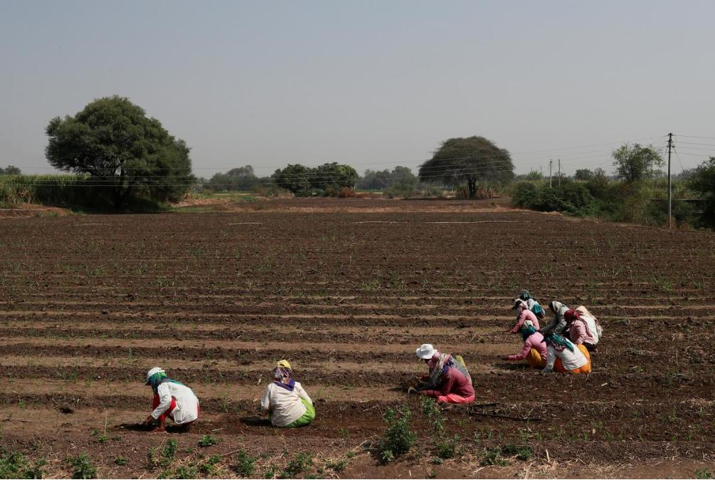 Low-income women in rural areas and depressed urban peripheries are at the sharp end of India's job crisis. Out of around 10 million jobs lost last year, a stunning 90 percent were held by women, according to @_CMIE https://reut.rs/2FhkyPi