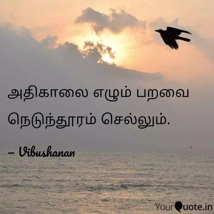 உலக சிட்டுக்குருவிகள் தினம் #vibu #birds #inspiration    Read my thoughts on YourQuote app at https://www.yourquote.in/vibushanan-govindan-t90k/quotes/atikaalai-elllum-prrvai-nettuntuurm-cellum-ntqyv…
