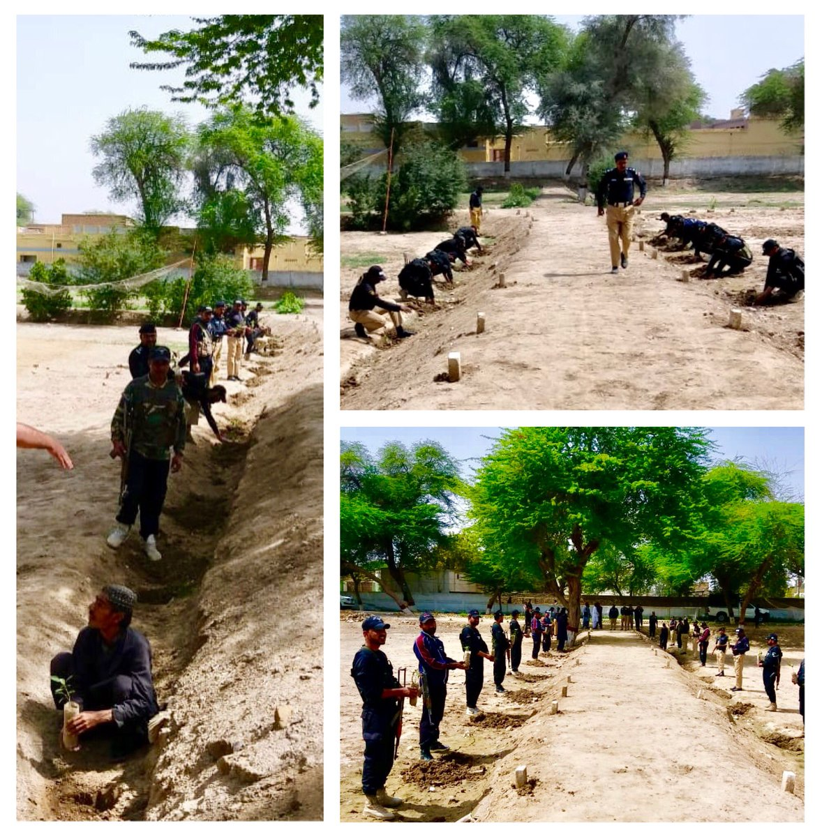 Gr8 to see #Balochistan joining the 10#BillionTreeTsunami with #Plant4Balochistan<br>http://pic.twitter.com/4I4Myrjlns