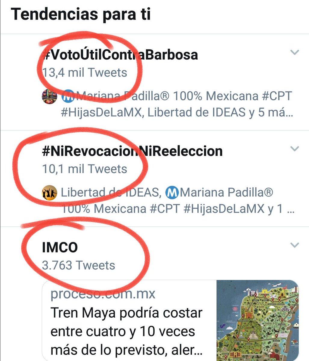 Rocío's photo on #NiRevocacionNiReeleccion