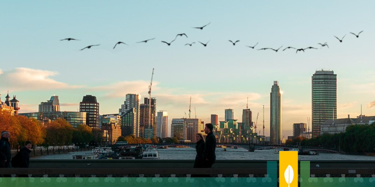 RT @CitiesWNature Why do we need #CitiesWithNature? Because it protects urban wildlife.  Why do we need #urbanwildlife? Because #cities containing wildlife habitat make for a better environment for people than areas largely devoid of #wildlife.  More from @wildlifesociety: https://t.co/7zejIcFvIH