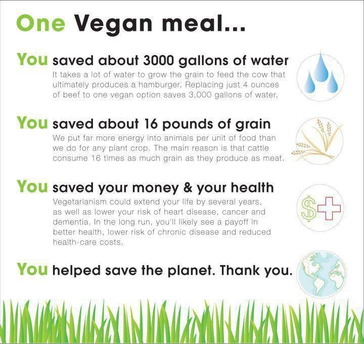 This is the impact ONE (1) vegan meal has, imagine the impact you have by going vegan!  Your choices matter. <br>http://pic.twitter.com/N2gMZRopXc