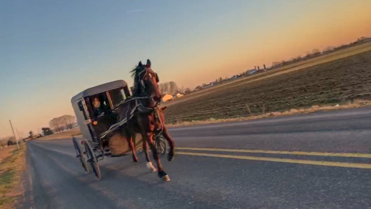 Signed an amateur runner and horrible #photographer Meanwhile, enjoy this  picture from my run. #amish #visitlancpa #discoverlancaster  #runpapic.twitter.com/ ...