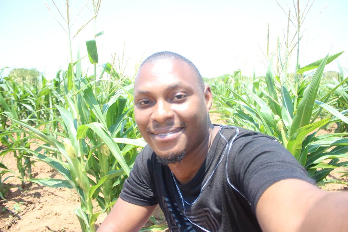 Guys, another thing that you need to learn is farming. I started in 2017 and this has been fulfilling so far. Right now ke tsentse dikoko tsa setswana le tsa mae. <br>http://pic.twitter.com/hl2BjueeH7