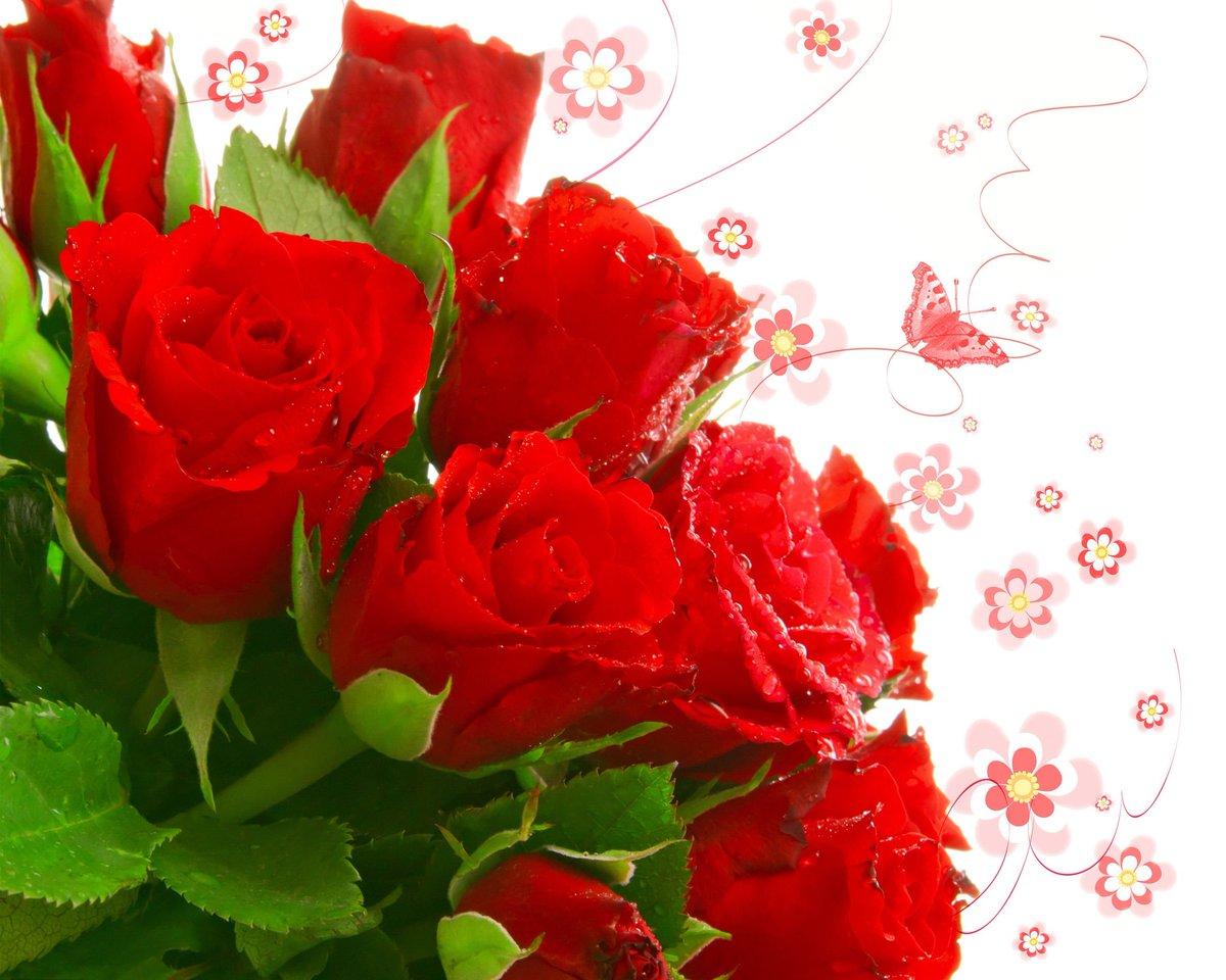 Розы красные поздравления
