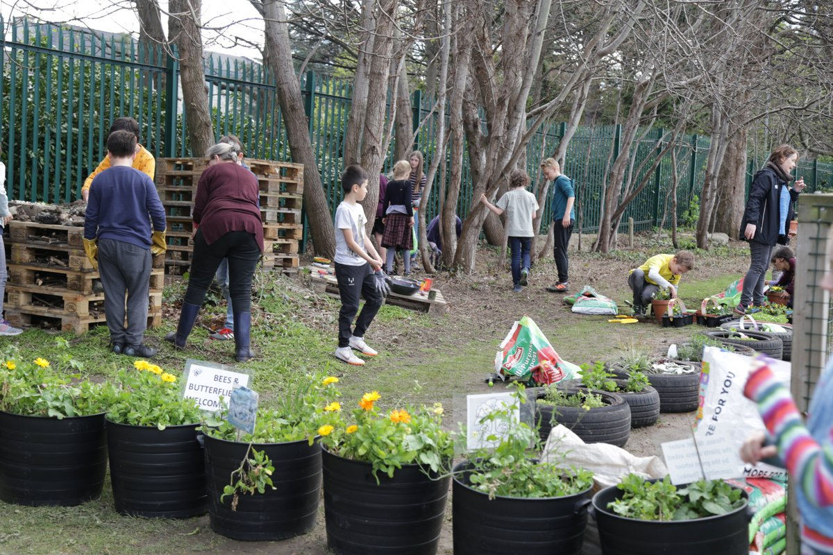 test Twitter Media - Our sensory garden is starting to take shape! Great whole-school effort to encourage #biodiversity @annetteblack6 https://t.co/4mNw1vW97i