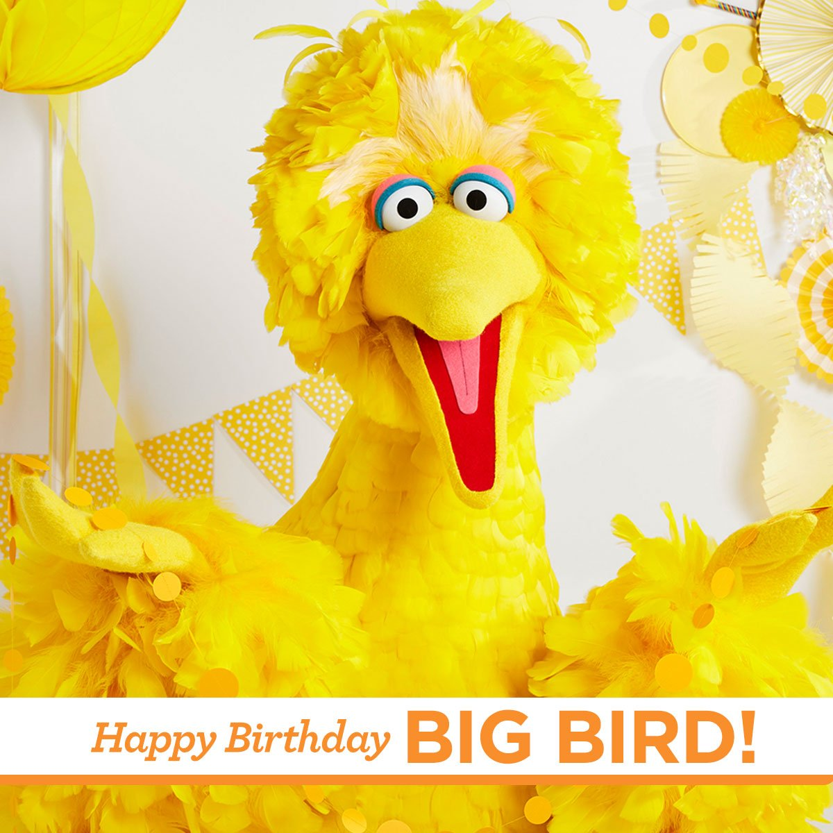Today we are celebrating the kindest and happiest bird on Sesame Street, @BigBird! We are so lucky to have a friend like you! #HappyBirthdayBigBird <br>http://pic.twitter.com/M2oWTNXhIm