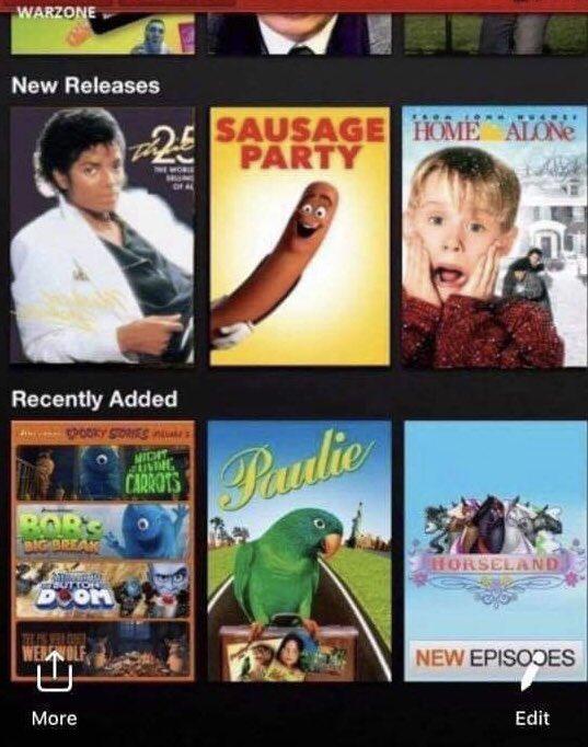 Netflix bög Porr