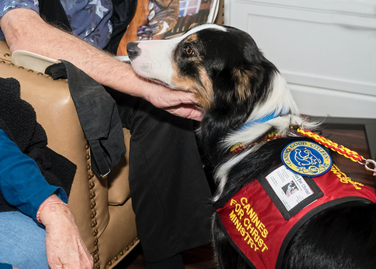 Border Collie, Blue works for Canines For Christ. With his mom, Ginger, he shares God&#39;s love at Assisted Living Facilities, Schools, and Churches.   #shopdog #dogs  http:// shopdogsbook.com / &nbsp;  <br>http://pic.twitter.com/62gRQcV7mF