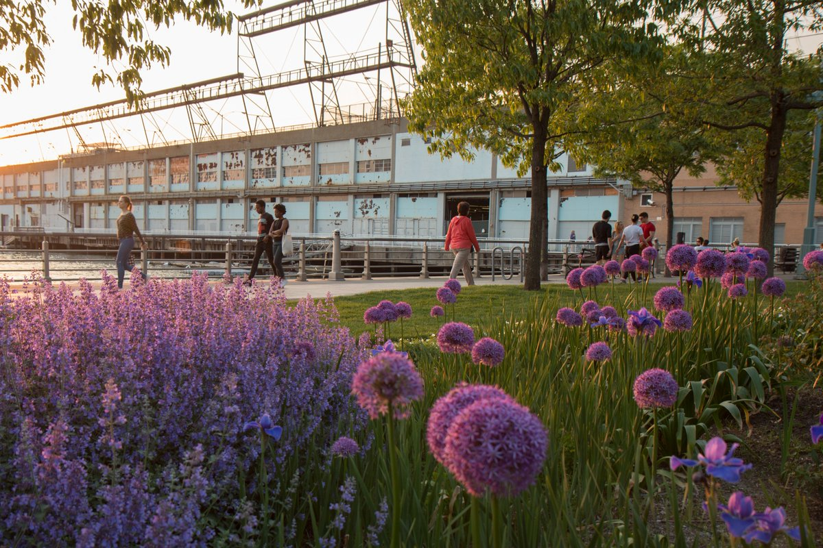 Happy first day of spring! Here's just a little preview of the beauty to come this season along #HRPK's four miles. Stay tuned as your Park bursts into bloom! 🌷🌸🌼🌺🌷