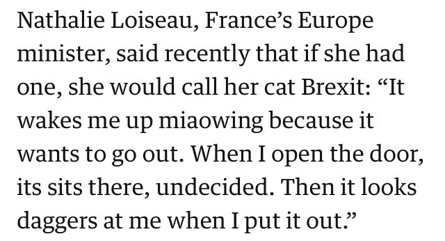 Hats off to Nathalie Loiseau, she's pretty much nailed it.  https://www. theguardian.com/politics/2019/ mar/20/pathetic-incoherent-chaotic-europes-verdict-on-brexit-shambles?CMP=Share_iOSApp_Other &nbsp; … <br>http://pic.twitter.com/qydQCfOi5G