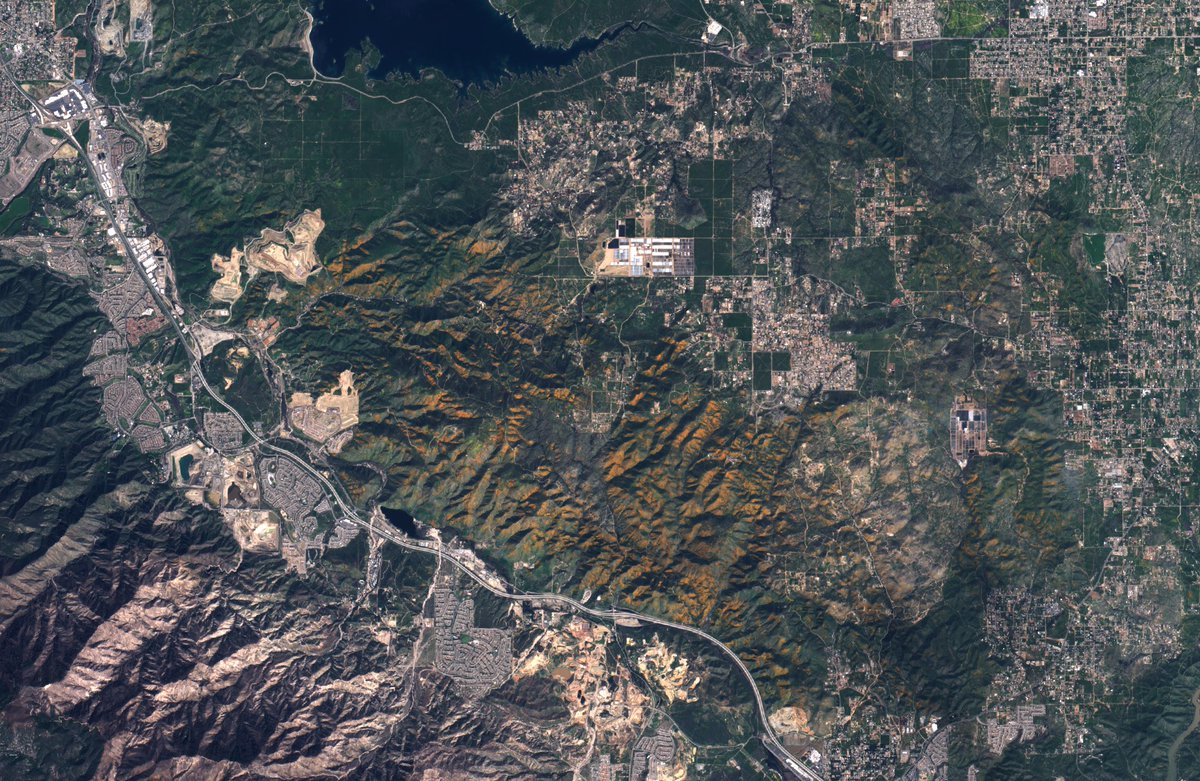 Capture of the #superbloom in Riverside County, #California as seen by @ESA_EO #sentinel2 this week 🌼 🛰️ 🌼 https://t.co/GQxYGaKri5