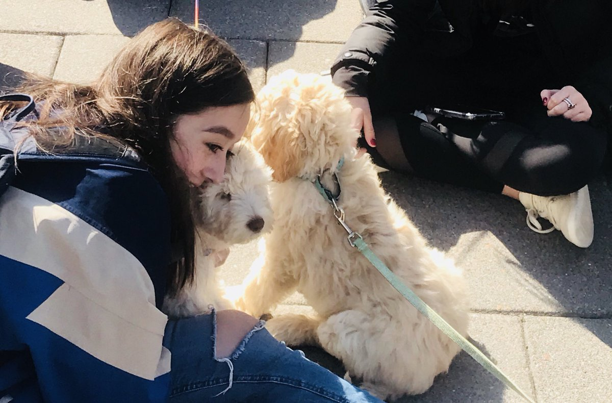 Enjoyed the #firstdayofspring at @SyracuseU with some puppies outside of the Whitman School.