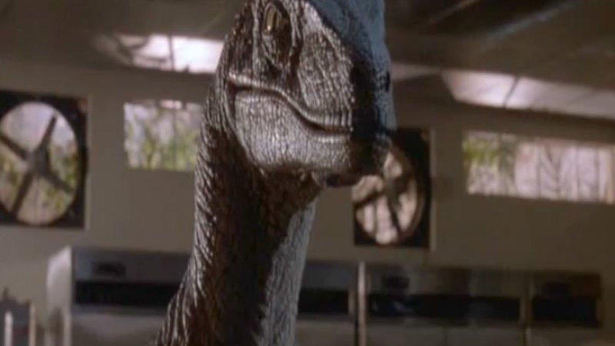 Velociraptor From 'Jurassic Park' Dies https://trib.al/pugpG26
