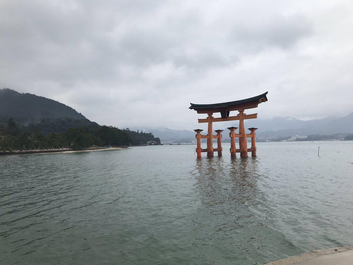 Jour 6 : Visite de Miyajima, jolie île à côté d'Hiroshima. Elle est notamment connue pour le son torii immergé. Visite temple + ascension du Mt Misen (sorry pas de photo, trop occupé à grimper). Ah oui y a des daims sur cette île 😍