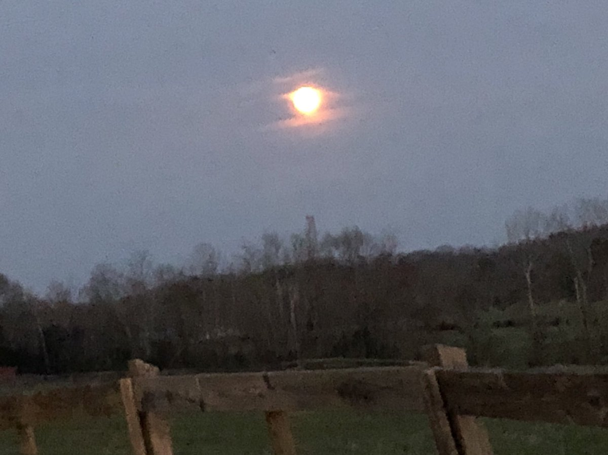 Gorgeous evening (and moon) in East Tennessee.