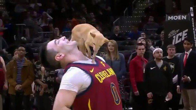 RT @cavs:  *** ¡Increíble! ¡Espectacular! La pujanza 🤯 Muy lindo 😍 #LosCavs x @castoinev 🐕🏀👏  #Cleveland #CAVS #AllForOne  #LeBronJames #StriveForGreatness #NBA #NBAAllStar #TeamLeBron https://twitter.com/cavs/status/1108529623023960065 …