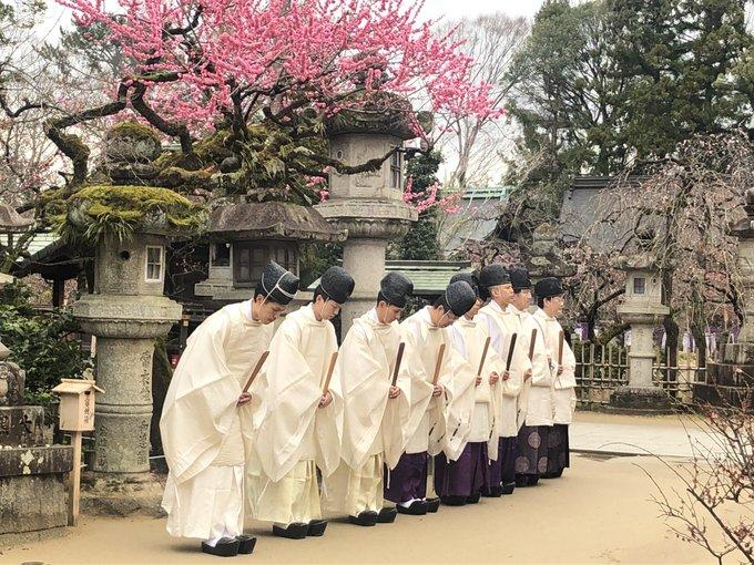 北野天満宮さんの梅ツイート(平成三十一年春)