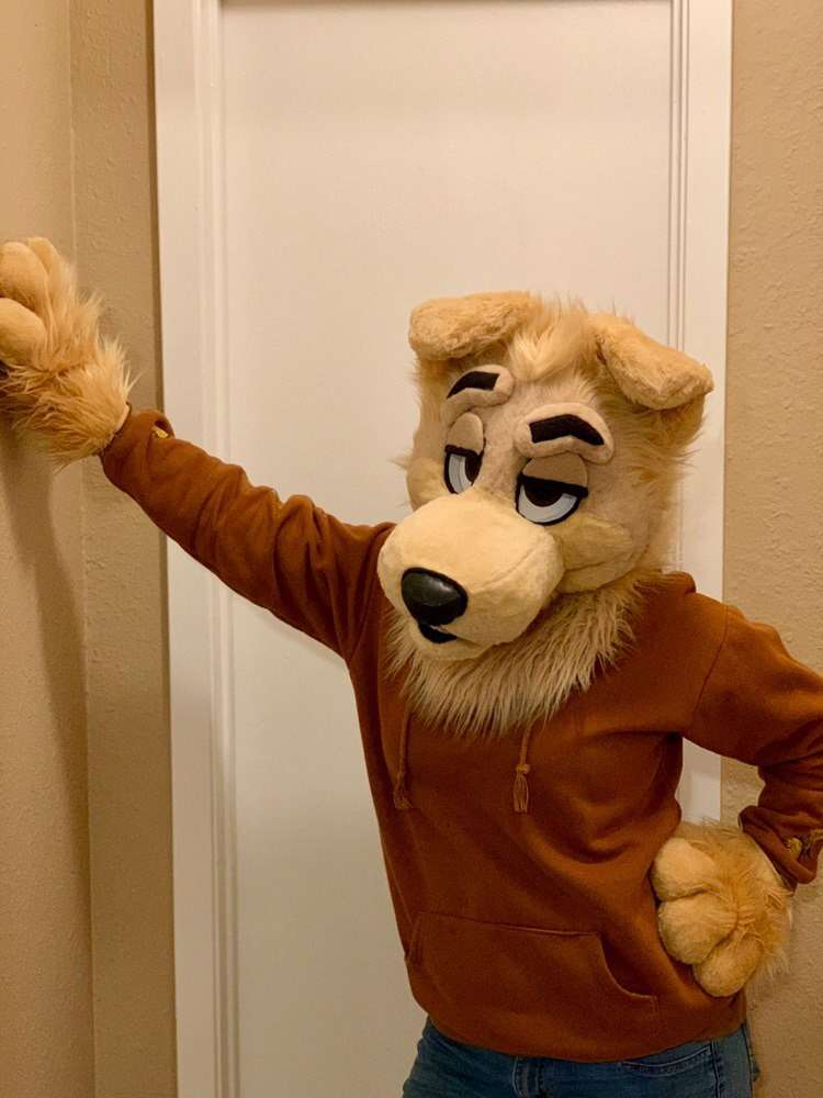 New #fursuit review:  [YES] Goldenfool Partial by @CoonecCreations!    Read it here:   http:// fursuitreview.com/blog/2019/01/2 0/yes-goldenfool-partial-by-coonec-creations/ &nbsp; … <br>http://pic.twitter.com/P7K6ETjX3f