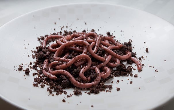 Jello WORMS in Cookie Crumb Dirt by Steve Chao. #GhastlyGastronomy <br>http://pic.twitter.com/O88d5VsX0j