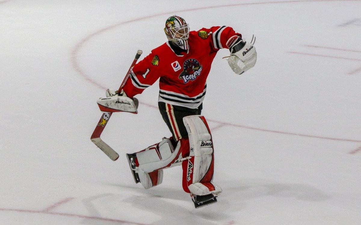 Delia is just the best. #Blackhawks  #IceHogs #NHL #AHL #HockeyTwitter   ( @ReicherStudios)<br>http://pic.twitter.com/9jp3feskRD