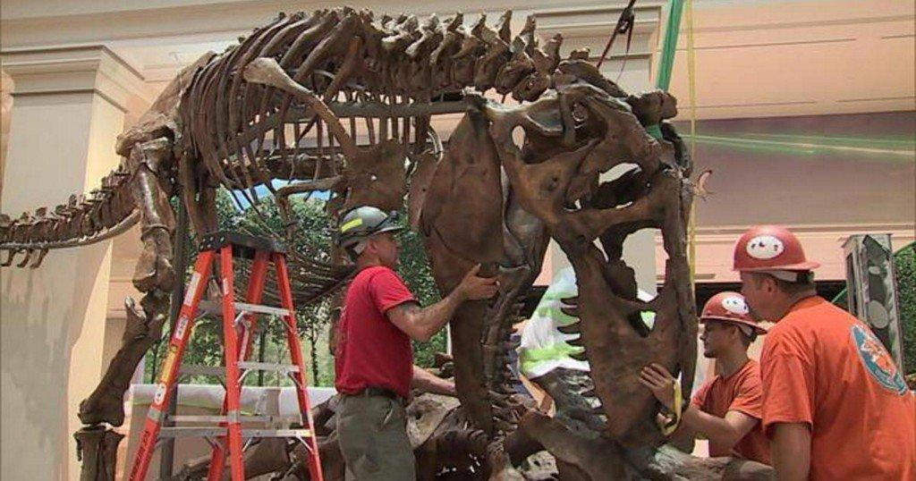 Inside the Smithsonian's revamped dinosaur exhibit https://cbsn.ws/2JtUWUN