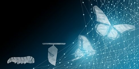 1/2 A reoccurring theme w/ #digital transformation: For it to happen w/ impact, you need to align culture from the top down https://informationweek.com/strategic-cio/11-digital-transformation-hacks-that-get-results/a/d-id/1333891… #innovation