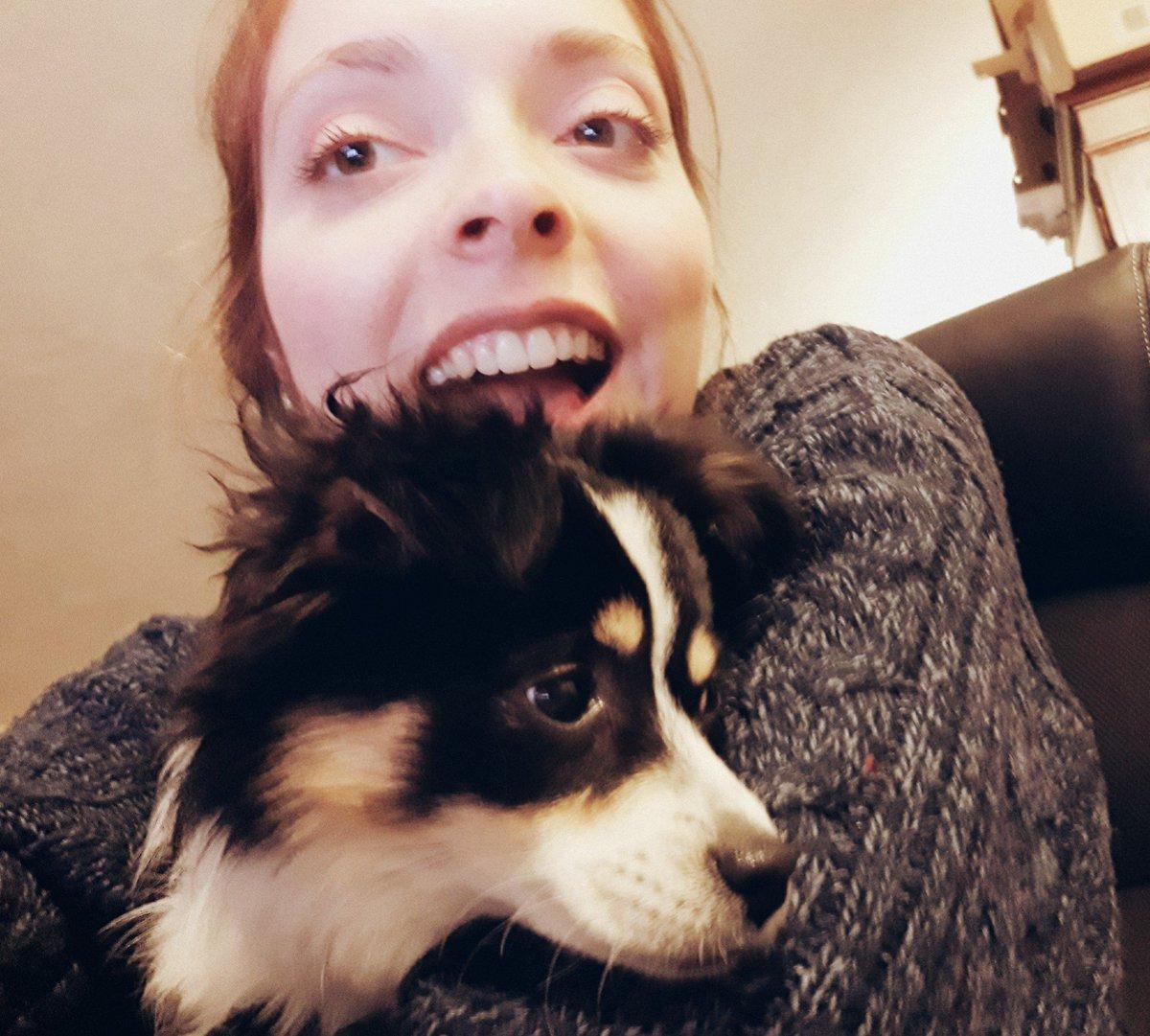 Kawaii desu neeeee 😍😍😍  #doggo #dog #doggie #pet #petsofinstagram #doglovers #cute #kawaii #love #gingergirl #happy