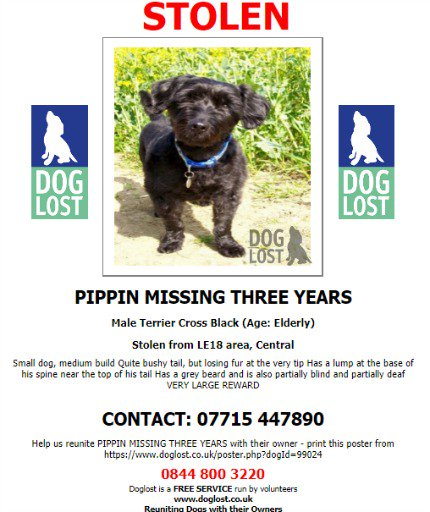 #STOLEN #DOG PIPPIN * STILL MISSING  Male Black Elderly #Terrier Cross * Partially Blind & Partially Deaf  #Missing from #Wigston #Leicestershire #LE18 March 15th 2016 #ScanMe @SAMPAuk_  @VetsGetScanning @pettheftaware #DogLostUK  https://www.doglost.co.uk/pet/99024