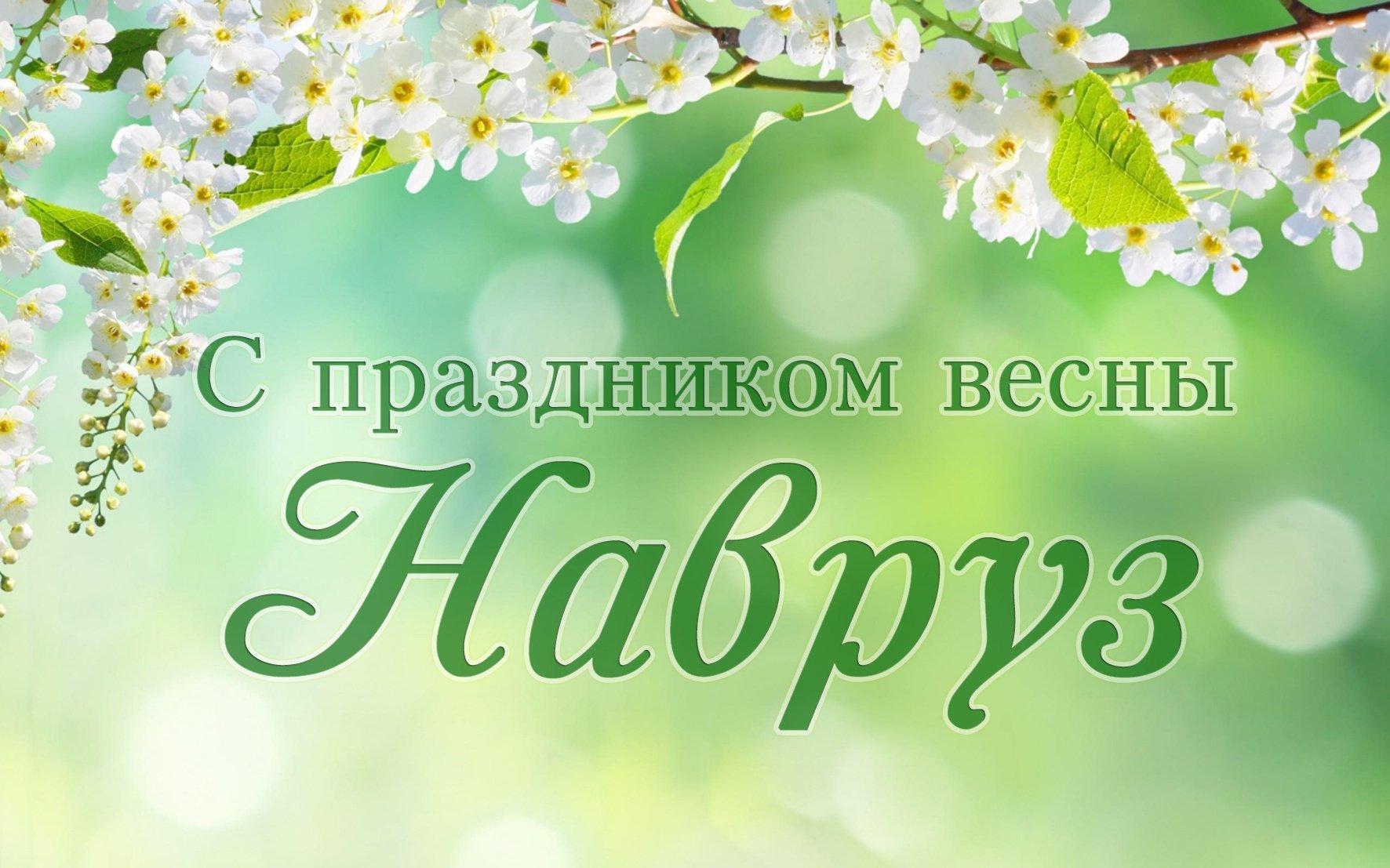 Смешные, поздравление с праздником навруз открытки