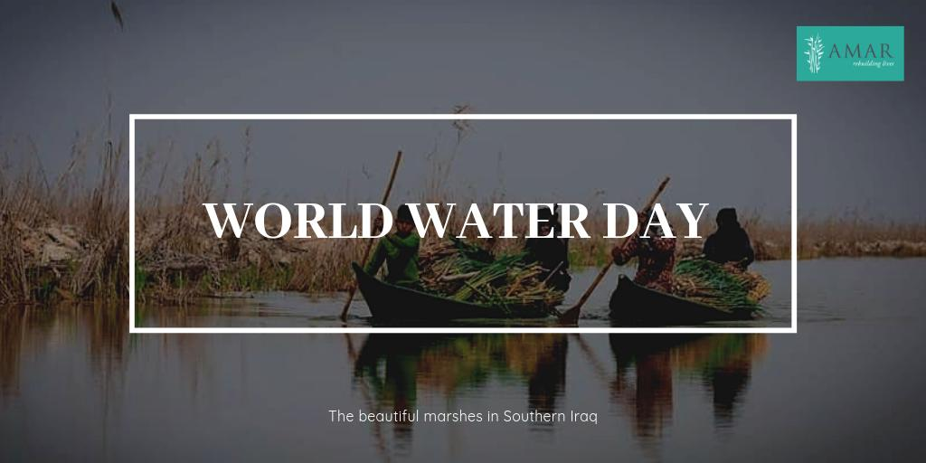 test Twitter Media - AMAR is building a water-purification system in the Iraqi marshes using the area's reedbeds as a natural filtration system.   To read more about the project and our work in the marshes, go to https://t.co/WFzIeci1ui   #WorldWaterDay #SDG6 https://t.co/1iWcZezwYj