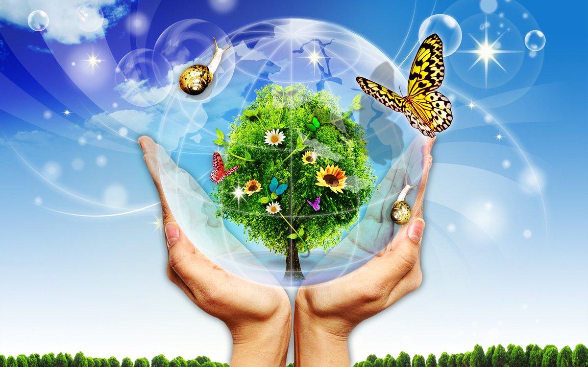 Картинка про охрану окружающей среды