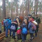Image for the Tweet beginning: Die Berliner #Waldschulen laden ein,