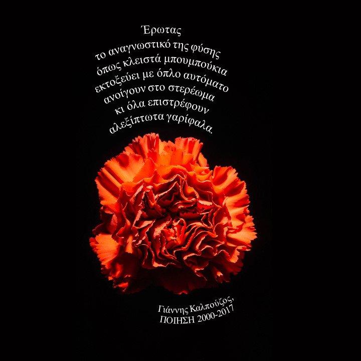 21 Μαρτίου γιορτάζει η #ποίηση #παγκοσμια_ημερα_ποιησης #WorldPoetryDay  «Έρωτας το αναγνωστικό της φύσης όπως κλειστά μπουμπούκια εκτοξεύει με όπλο αυτόματο ανοίγουν στο στερέωμα κι όλα επιστρέφουν αλεξίπτωτα γαρίφαλα».  Γιάννης Καλπούζος, ΠΟΙΗΣΗ 2000-2017