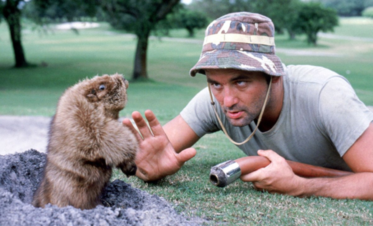 Bill Murray still holding a grudge with Gophers all these years later <br>http://pic.twitter.com/9Txytt39ko
