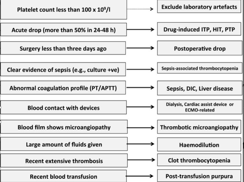 Why are hematologists always such eloquent speakers? @bhwords Excellent and very practical talk by Tina Dutt from Liverpool! @ISICEM #ISICEM19 #FOAMEd #FOAMcc #MedEd   Your first step investigating thrombocytopenia:<br>http://pic.twitter.com/BR4rIhtQY6