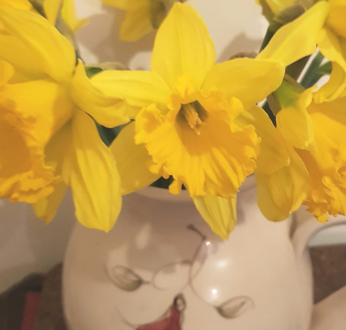 Lá Lus an Chrom Cinn inniú, 22 Márta. Nach deas iad na hainmneacha Gaeilge ar bhláthanna. Flowers have terrific names in Irish!