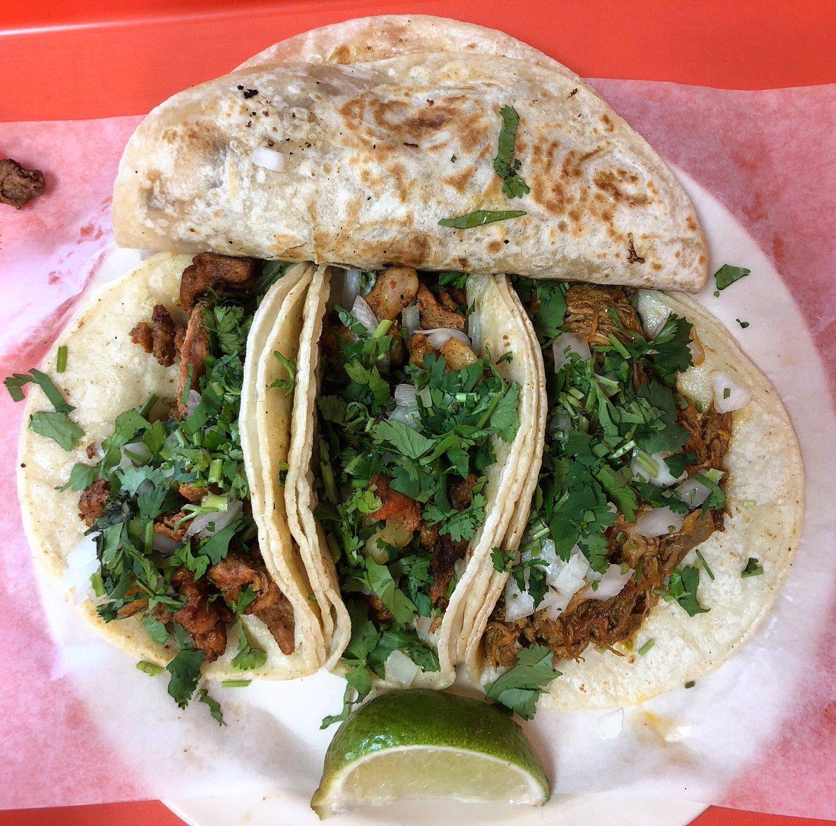 The Cochinita Pibil was #bienlit!  . . . #Houston #LaBalaTaqueria #tacos #htxeats #htxtacos #houstontacos #htxfoodie #houstontexas #eeeeeats #foodie #tacopic.twitter.com/RVNPWbrInP – at Tacos La Bala #2
