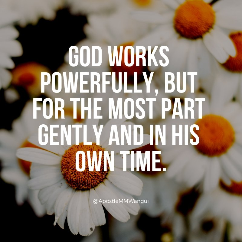 God works powerfully, but for the most part gently and in His own time. Be blessed.  #30DaysOfPrayer  #GospelReloaded #FaithFriday ____________________  #FearlessFriday #FeelGoodFriday #FridayThoughts #FridayWisdom #FeatureFriday<br>http://pic.twitter.com/hjkme2x7Ia