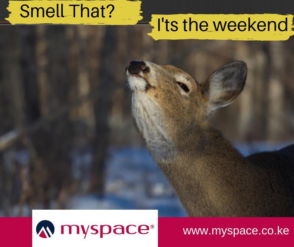 Myspace Properties's photo on #FeelGoodFriday